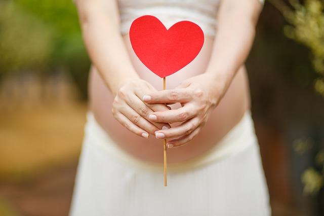 Kobieta w ciąży trzyma serce na patyku